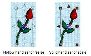 Scale/Resize selection handles
