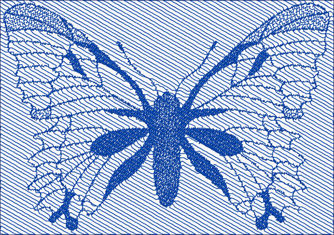 Butterfly_Angle_30